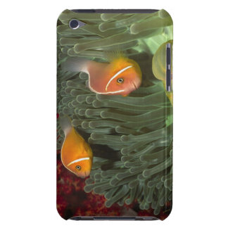 MagnificantのいそぎんちゃくのピンクのAnemonefish Case-Mate iPod Touch ケース
