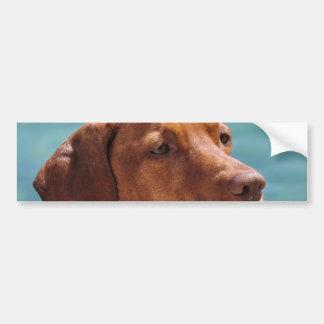 MagyarのVizsla犬 バンパーステッカー