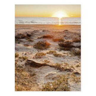 Malaquiteのビーチの砂丘 ポストカード