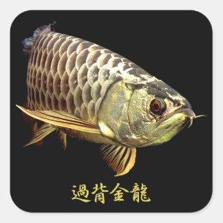 Malaysian Golden Arowana スクエアシール