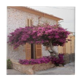 Mallorcaの木の自然のデザイン タイル