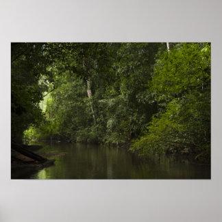 Mapariの川、Mapari Rupununi、ガイアナ ポスター