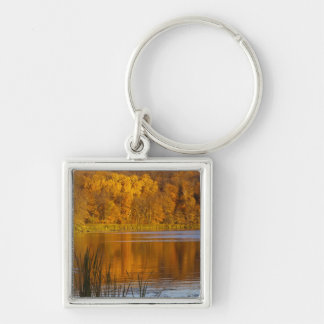 Maplewoodの州立公園の秋色近く キーホルダー