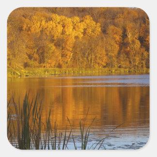 Maplewoodの州立公園の秋色近く スクエアシール