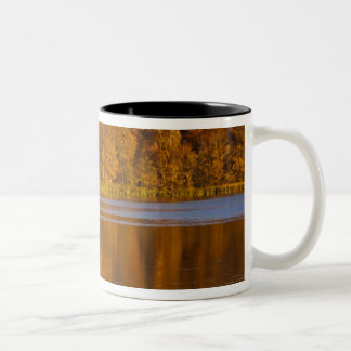 Maplewoodの州立公園の秋色近く ツートーンマグカップ