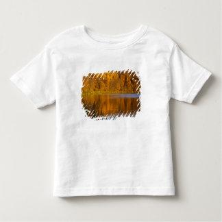 Maplewoodの州立公園の秋色近く トドラーTシャツ
