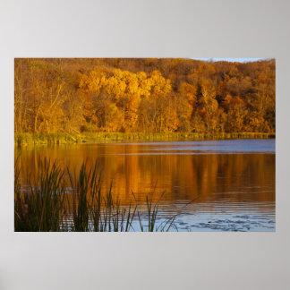 Maplewoodの州立公園の秋色近く ポスター