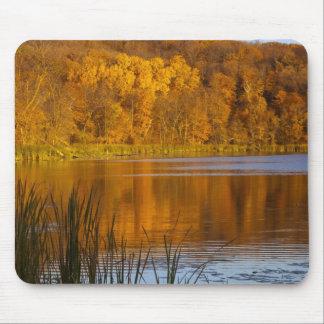 Maplewoodの州立公園の秋色近く マウスパッド
