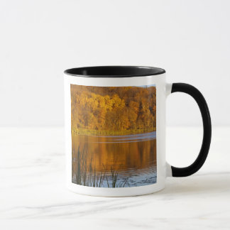 Maplewoodの州立公園の秋色近く マグカップ
