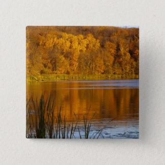 Maplewoodの州立公園の秋色近く 5.1cm 正方形バッジ