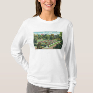 Maplewood公園のバラ園の眺め Tシャツ