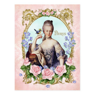 Marie Antoinette Pink Damask Antonia Rose Postcard 葉書き