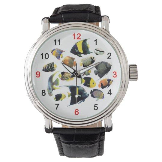 Marine Angelfishの腕時計,No.02 腕時計