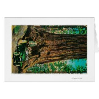 Mariposaの大きい木果樹園、ヨセミテ グリーティングカード