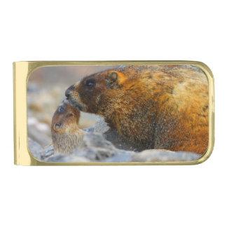 marmotおよびベビー ゴールド マネークリップ
