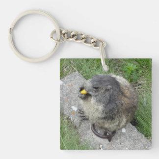 Marmotのキーホルダー キーホルダー