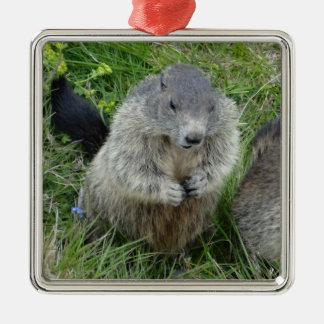 Marmotsのオーナメント メタルオーナメント