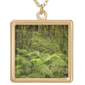 Mataiの近くのシダそして天然薮は、Catlins落ちます ゴールドプレートネックレス
