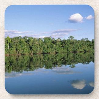 Mato Grossoの国家、アマゾン、ブラジル。 森林に覆われた コースター