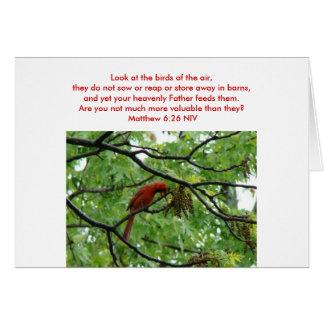 Matthewの6:26、(鳥)ショウジョウコウカンチョウ及びヒメレンジャク カード