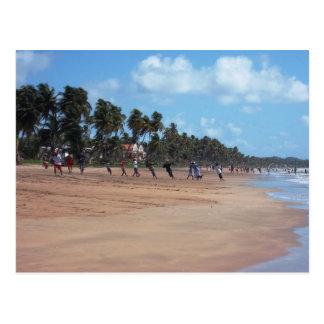 Mayaroのビーチの早朝の魚釣りの郵便はがき ポストカード