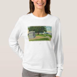 Mayflowerの埋葬記念碑のコールズの丘の眺め Tシャツ