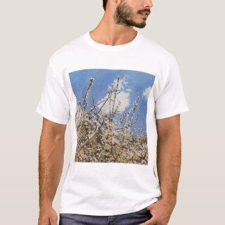 Mayflower 2012年 tシャツ