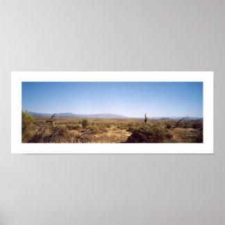 McDowellの国立公園 ポスター