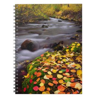 McGeeの入り江に沿う秋色 ノートブック