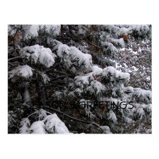 MClairArtのPhotosNArtの休日の冬の郵便はがき ポストカード