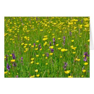 measdowの野生の蘭そしてキンボウゲ カード