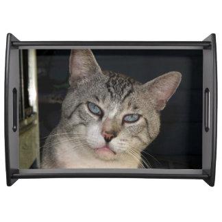 Meece猫のトレイ トレー