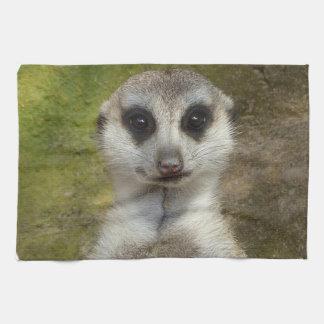 Meerkatおもしろいな002の02_rd キッチンタオル