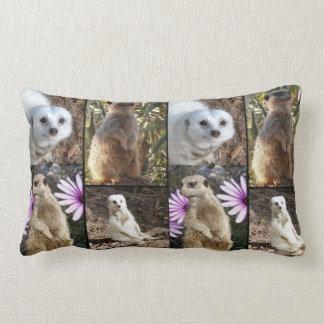 Meerkatの写真のコラージュ、腰神経のクッション ランバークッション