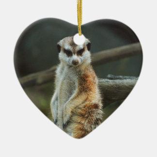 Meerkatの写真 セラミックオーナメント