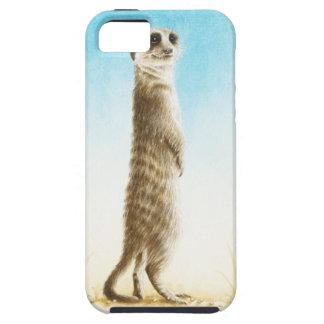 Meerkatの穹窖の箱 iPhone SE/5/5s ケース