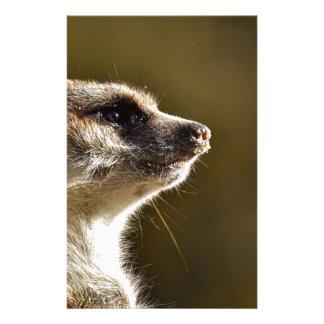 Meerkat動物自然の動物園のTiergartenの小さい毛皮 便箋