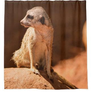 Meerkat シャワーカーテン