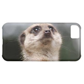 Meerkat iPhone5Cケース