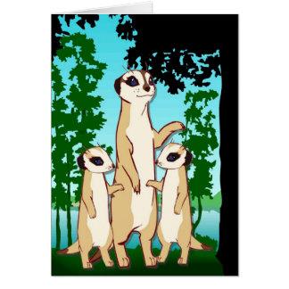 Meerkatsに会って下さい カード