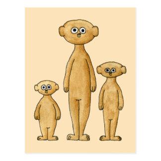 Meerkats. ポストカード