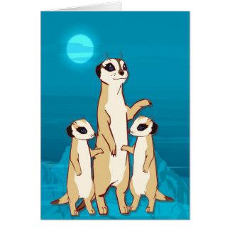 meerkats、月光の家族に会って下さい カード