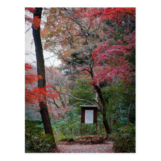 Meiji-Jinguの神社の内部の庭 ポストカード