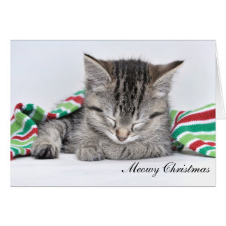 Meowyのクリスマスカード カード