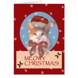 Meowyのクリスマス! カード