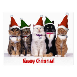 """Meowyクリスマス!"" 猫 ポストカード"