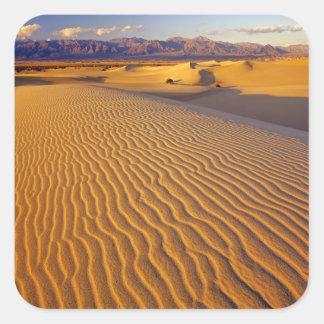 Mesquiteのデスヴァレーの平らな砂丘 スクエアシール