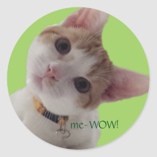 meWOW好奇心が強い猫のよい仕事のカスタマイズ可能なステッカー ラウンドシール