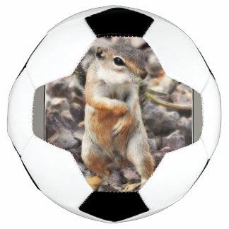 Mikeyの地上リスのサッカーボール サッカーボール