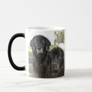 Mildred及びハリーそれ モーフィングマグカップ